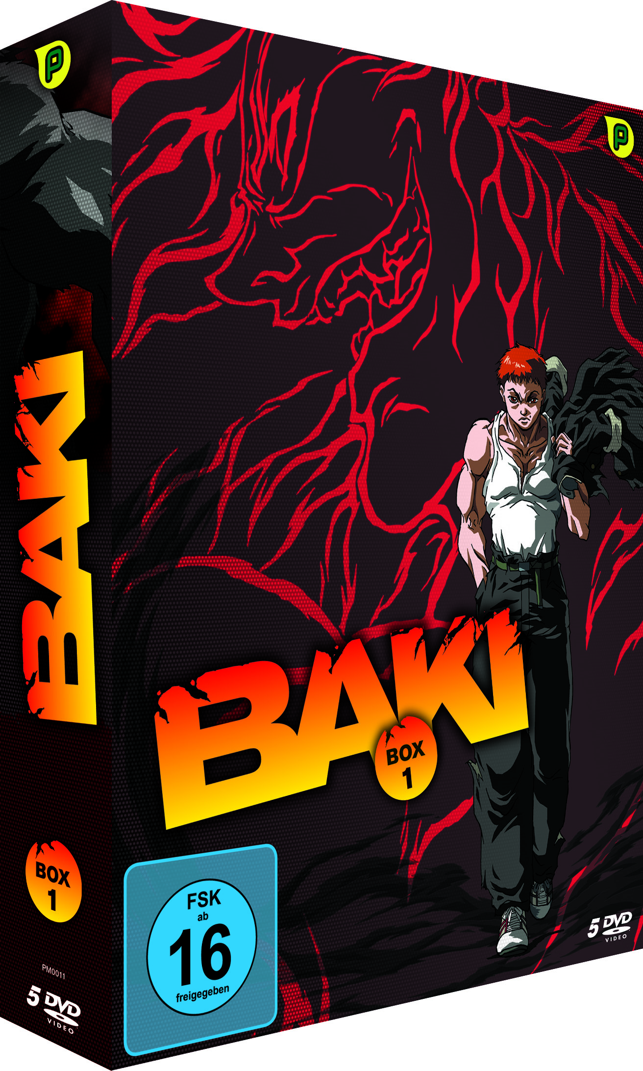 Baki Box Vol. 1 – 1.Staffel (5DVDs)